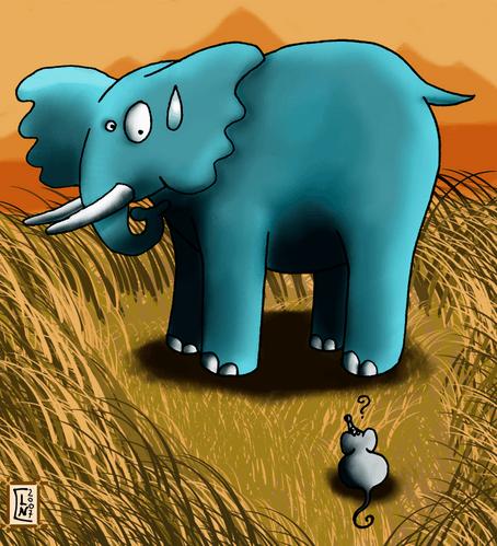 éléphant qui a peur de la souris