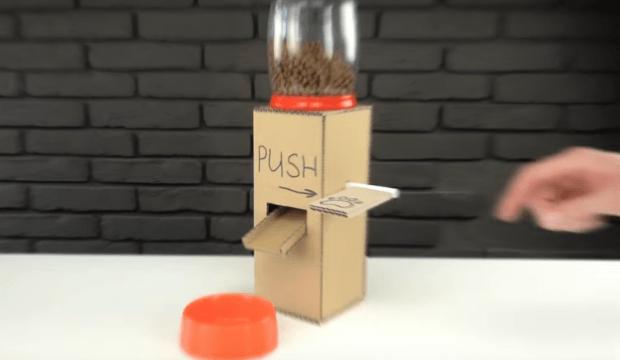 Comment fabriquer un distributeur de croquettes pour chien?